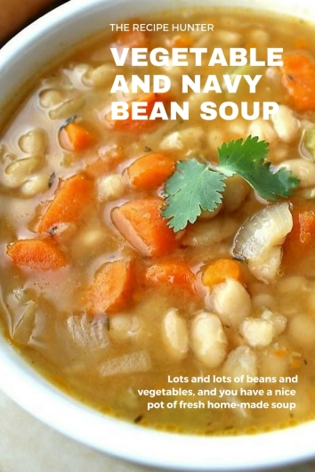 Vegetable and Navy Bean Soup