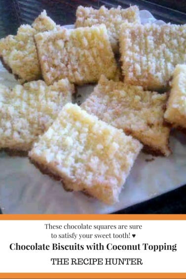 Chocolate Square Biscuit with Coconut Topping