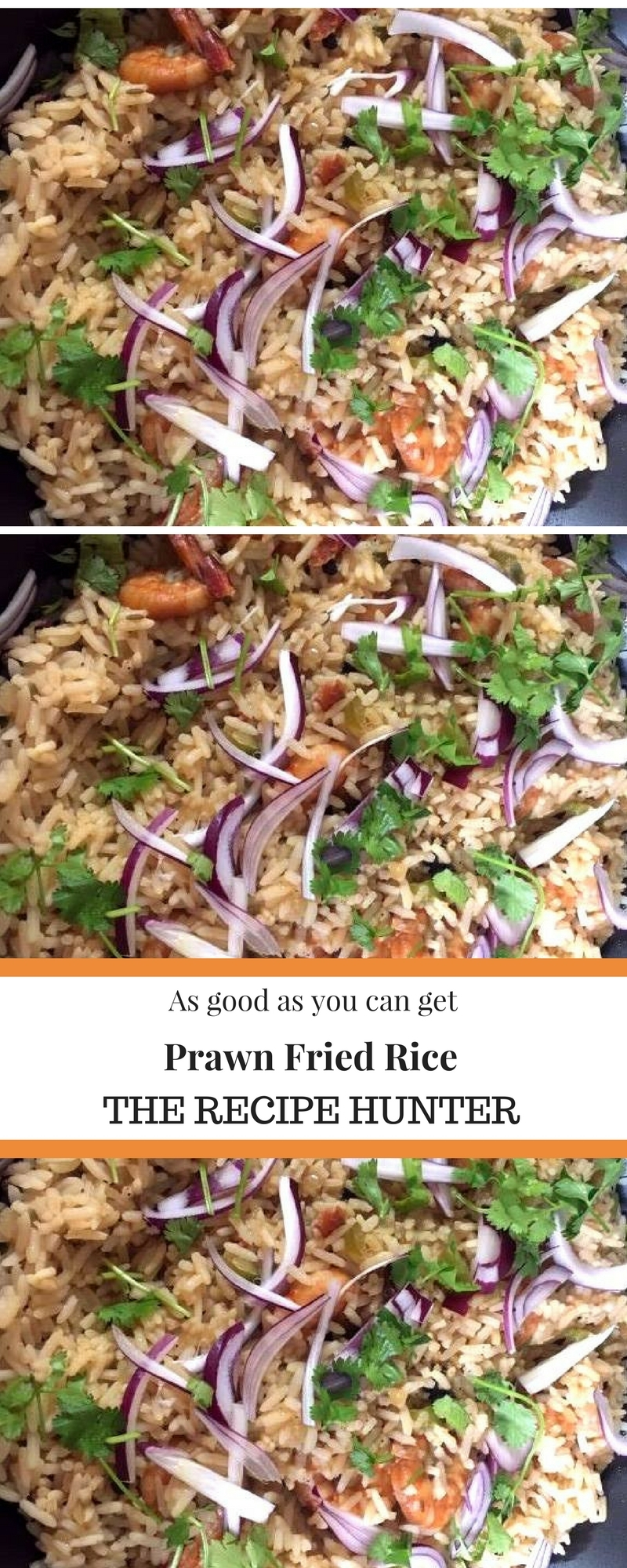 Pin Prawn Fried Rice